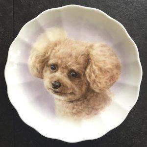 上絵付け皿 ティーカッププードル